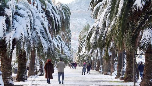 promenada plme sul neve.jpg