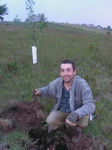 pierwsze drzewo1_2.jpg
