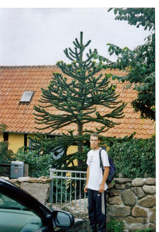 bornholm Gughejm 28.07.2003.jpg