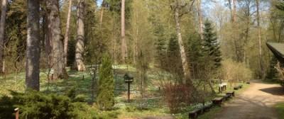 Arboretum Kudypy 012 (Kopiowanie).jpg