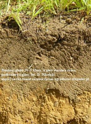 gleba IV klasy.JPG